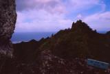 Tropical Rainforest on Rarotonga