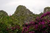 Hạ Long Bay 2007