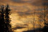 An Everett, Washington sunset................