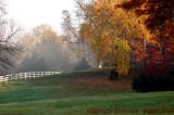Tamworth Farm  Aldie, Va