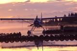 Nature Beluga Lake Homer Spit, Ak