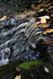 20061014-5208.jpg