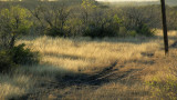 Ranch Powerline 1