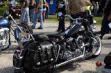 Awesome Roadking
