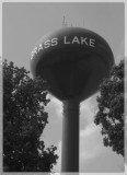 Grass lake, MI