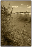 Colorado River  - 2