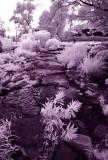 IR Garden