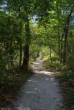 Turner Falls path