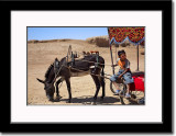 Donkey Cart and Our Very Young Driver