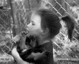 10 07 06 , Girl@ animal shelter exhibit, KM A1 .jpg