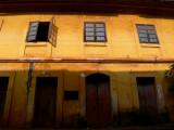 Burnt yellow