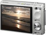 T100_Silver_Rear-CW_LCD_lg.jpg