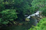 Tong-Hou Stream