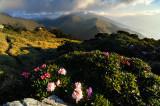 East of Mt. Ho-Huan
