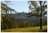 Blick zum Hochwald