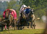 ChuckWagon Races -  Finals