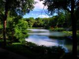 Central-Park-HDR-3.jpg