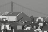 suspension bridge & the city