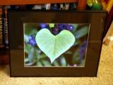 Heart Leaf Mobius.jpg
