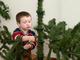 Assembling Christmas