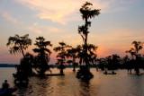 Lake Martin Sunset II
