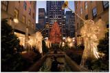 Rockefeller Center Christmas Tree  2