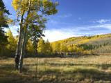 Colorado IMG_5378