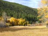 Colorado IMG_5386