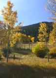 Colorado IMG_5388