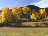 Colorado IMG_5391