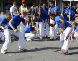 Anna and Juliano in a Capoeira performance