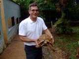Tortoise at the Nairobi Snake Park