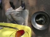 Automotove Repairman