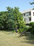 I and the 22' jungle-gym in our neighborhood park