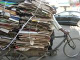 Scrap cardboard