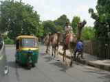 The Three Wise Men of Nizamuddin East