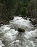 The churning Merced River