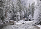 Early morning Merced River