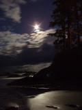 Moonlight over Chesterman Beach