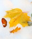 November 2: A change of season