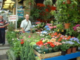 Garden shop in the Egyption spice market