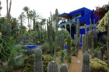 deep blue villa at the back - the Majorelle & Museum of Islamic Art