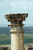 columns with twisted fluting and composit capitals