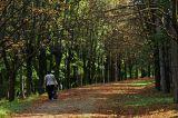 Park in Topola
