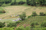 Bitola - Military Cemetery