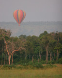 The balloon takes of at 6:30 am.  I wouldn't give up a game drive for a balloon ride but I'm sure it's fun.