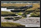 Leigh Marshes Essex