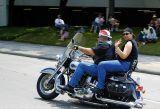 Harley Softail 1