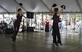 Houston Bay Area Ballet & Theater 01