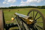 Brass Cannon at Chickamauga